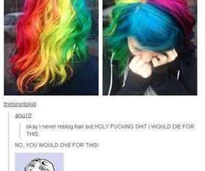 funny, tumblr, and hair image
