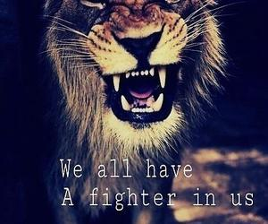 brave, fighter, and lion image