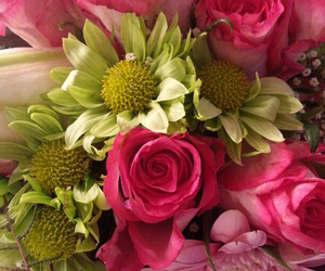 colourful, flowers, and pink image