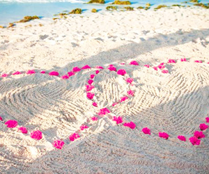 love, beach, and pink image