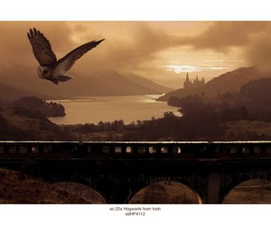 concept art and harry potter image