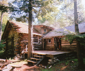 forest, log cabin, and house image