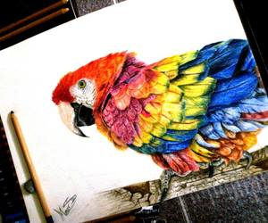 art, drawing, and colorful image