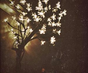 flowers, lights, and vintage image