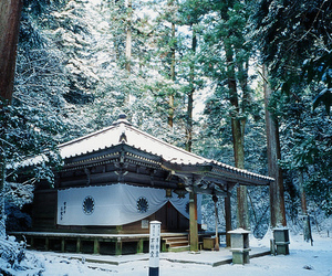japan, photography, and winter image