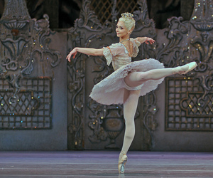 royal, ballet, and akane takada image