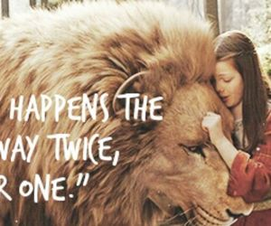 aslan, lion, and lucy pevensie image