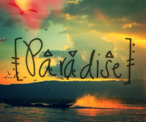 paradise, summer, and love image