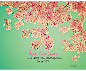 patience, sabr, and qur-an image