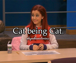 ariana grande and cat image