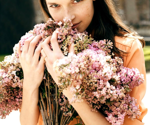 beauty, flowers, and smell image