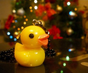 accesories, ducks, and lights image