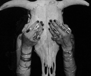 black and white, skull, and rings image