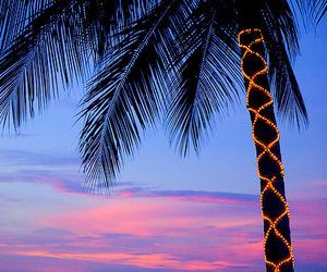 beach, summer, and light image