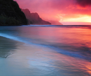sunset, beach, and nature image