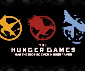 the hunger games, hunger games, and catching fire image