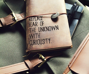 curiosity, quotes, and fear image