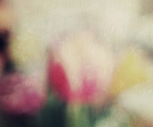 art, flowers, and tulips image