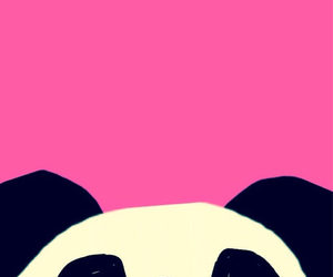 panda, pink, and cute image