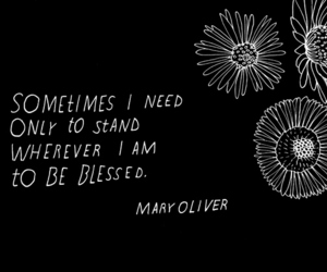 quote, blessed, and life image