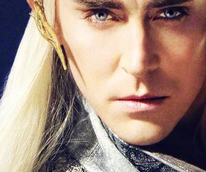the hobbit, elves, and mirkwood image