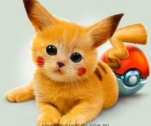 pokemon, cat, and pikachu image