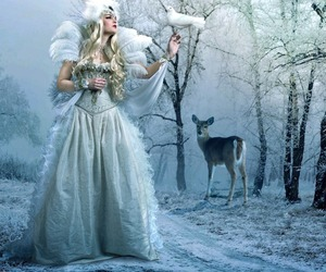 animals, cold, and fairy image