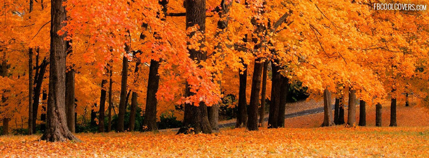 Autumn Fb Covers For The Timeline Profile On We Heart It