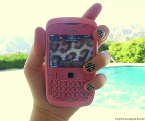 blackberry, pink, and pool image