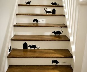 mouse, stairs, and home image