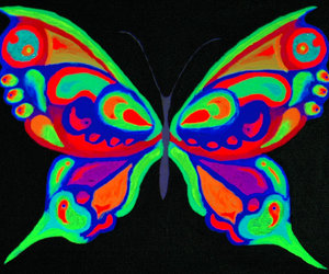 butterfly, neon, and colors image