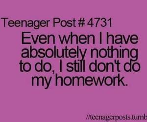 homework, funny, and quotes image