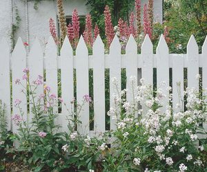 fence, picket, and white image