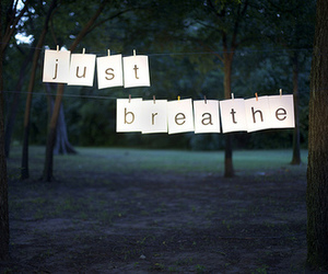text, breathe, and tree image