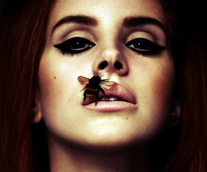 lana del rey and bee image