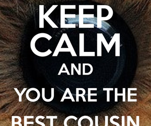 keep calm and coisin image