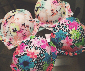 bras, girly, and pink image
