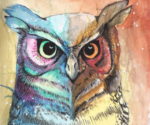 owl, colors, and drawing image