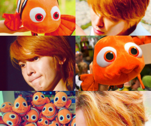 donghae, nemo, and super junior image