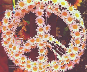 peace, flowers, and daisy image