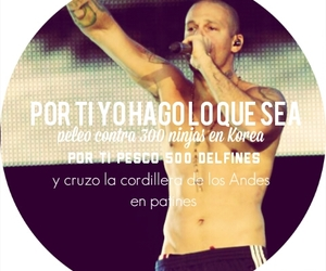 frases, calle 13, and residente image