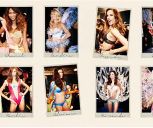 Victoria's Secret, angel, and candice swanepoel image