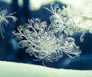 beautiful, ice, and winter image