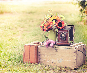 camera, holiday, and vintage image