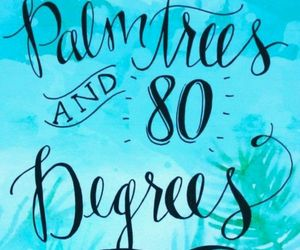palm trees, quotes, and summer image