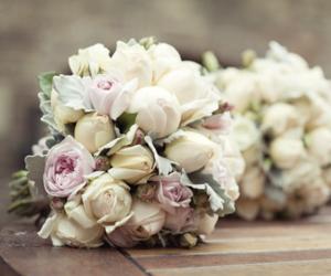 flowers, rose, and elegant image