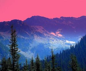 color, forest, and mountains image
