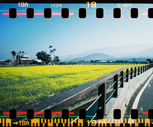 lomo, taiwan, and spracket roecket image