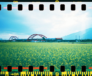 lomo, taiwan, and lomography image