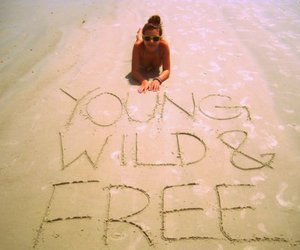 beach, wild, and free image